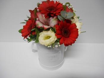 Květinový box barevný