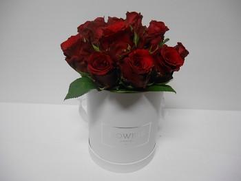 Květinový box 15růží