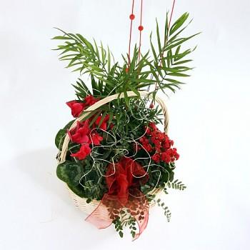Mix hrnových květin v koši